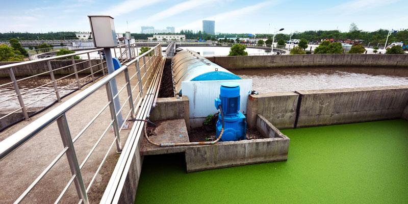 Technologies intégrées de sorption pour récupérer azote et phosphore des perméats issus d'un bioréacteur anaérobie à membranes
