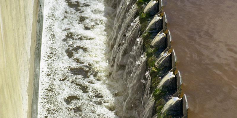 Particules de polymères avec et sans empreinte moléculaire pour l'élimination des CPSE et des PPSP présents dans les eaux et eaux usées.