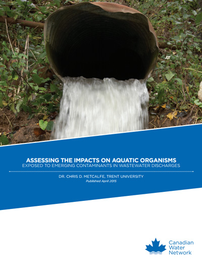 Assessing the Impacts on Aquatic Organisms Exposed to Emerging Contaminants in Wastewater Discharges